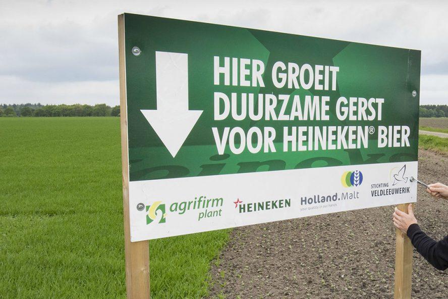 Foto: Jan Willem van Vliet -