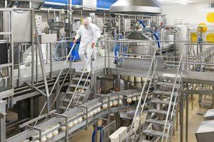 De specifieke stremsels en zuursels van CSK zijn essentieel voor de productie van beschermde kaassoorten als Gouda en Edam-Holland. Hier Edammertjes op de productielijn in Marum. - Foto: Jan Willem van Vliet -