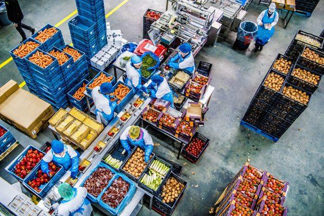 Groothandel in groente en fruit. Handelaren in voedingsmiddelen realiseerden met 6% de grootste stijging in vergelijking met vorig jaar. Foto: ANP