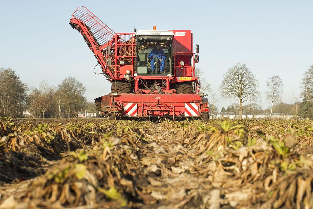 Foto: Koos van der Spek - Foto: Koos v.d. Spek