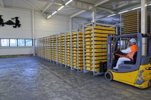 Nederland voerde in 2019 meer kaas uit dan het jaar ervoor en voor een hogere prijs. - Foto: Lex Salverda