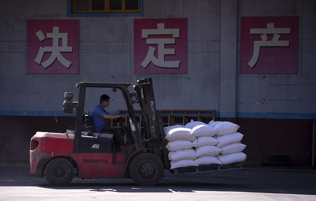 Veevoeropslag in China. Sinds de uitbraak van Afrikaanse varkenspest is de varkensstapel daar gekrompen en is dus minder voer nodig. - Foto: ANP