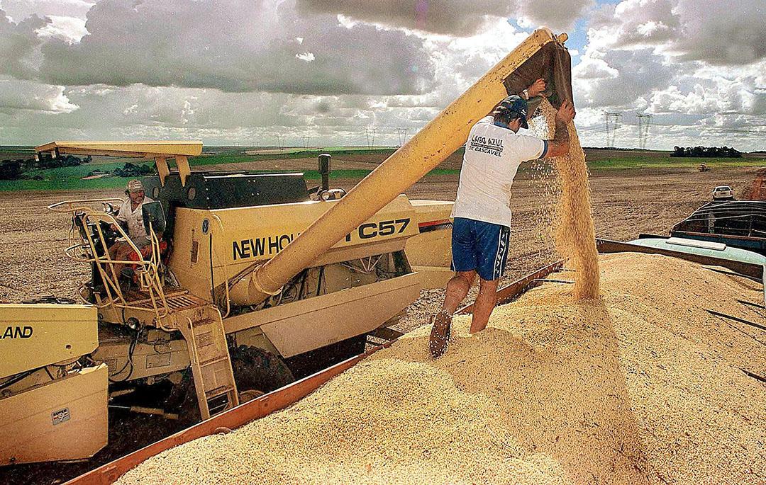 Sojaproductie in Brazilië. Foto: ANP