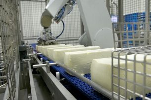 Mozzarellaproductie bij Milcobel in Langemark. - Foto: Milcobel