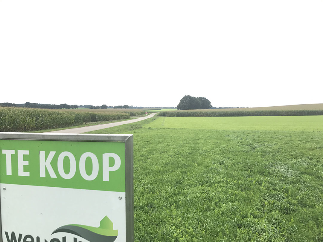 Foto: Martijn ter Horst -