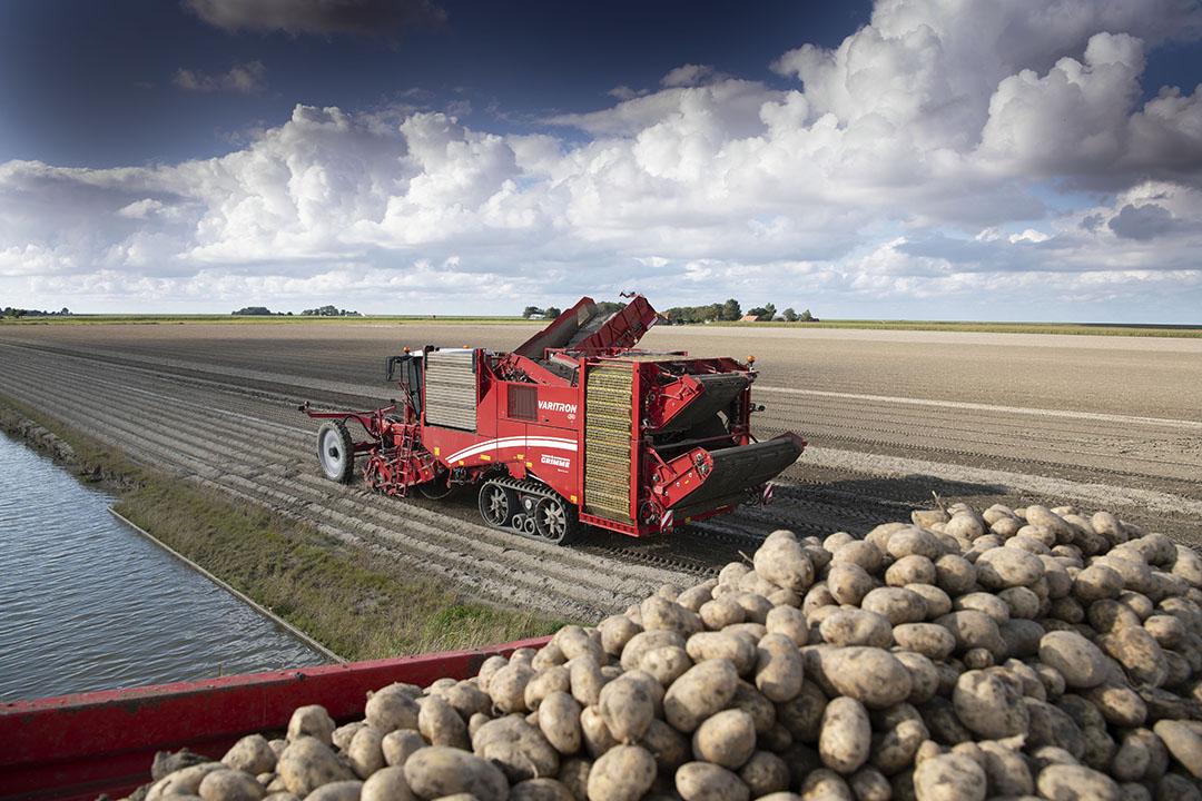 Rooien van consumptieaardappelen. Foto: Mark Pasveer