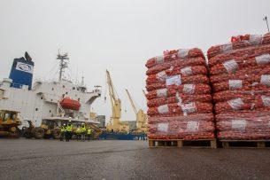 Uien voor export naar Senegal in de haven van Vlissingen. - Foto: Peter Roek