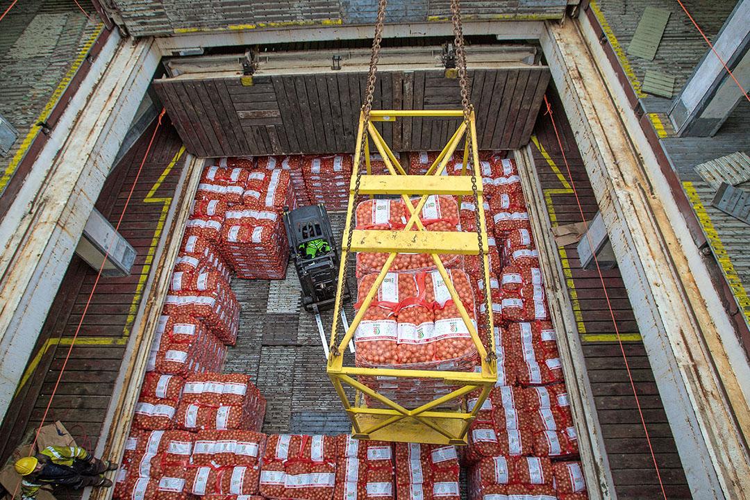 Hoewel de afzet eind mei terugloopt, zijn al veel uien geëxporteerd met name in de eerste helft van het exportseizoen. Foto: Peter Roek