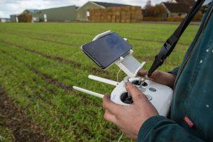 Een bollenteler gebruikt een drone om data te verzamelen. - Foto: Peter Roek