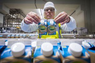 Productielijn in de vestiging in Maasdam van zuivelconcern FrieslandCampina. - Foto: ANP