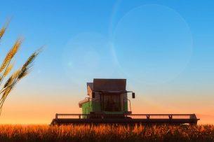 Tien jaar geleden (seizoen 2009-2010) stelde Rusland nog weinig voor op de graanmarkt. Inmiddels is het land de grootste exporteur van tarwe in de wereld. - Foto: Canva