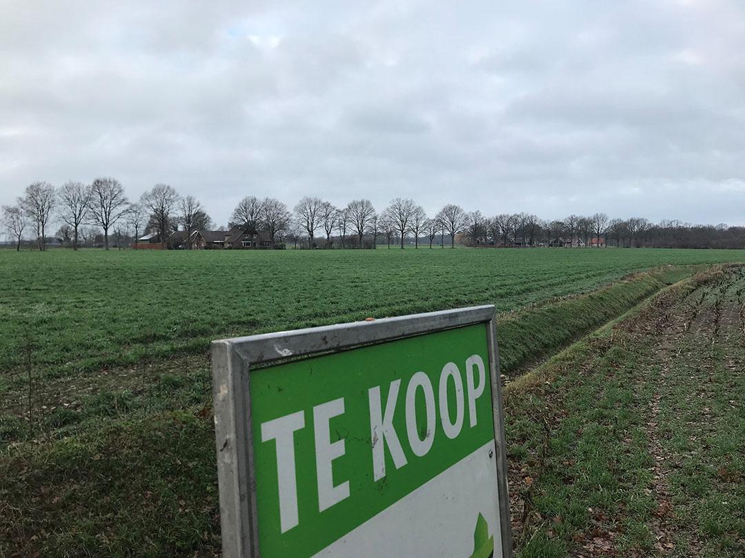 Foto: Martijn ter Horst