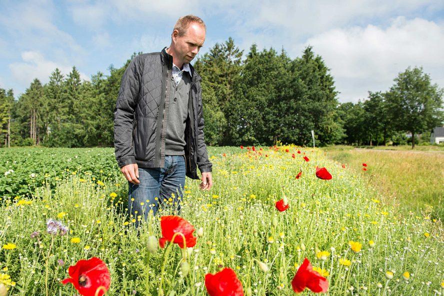 Akkerbouwer Jan Reinier de Jong uit Odoorn. - Foto: Reina de Vries