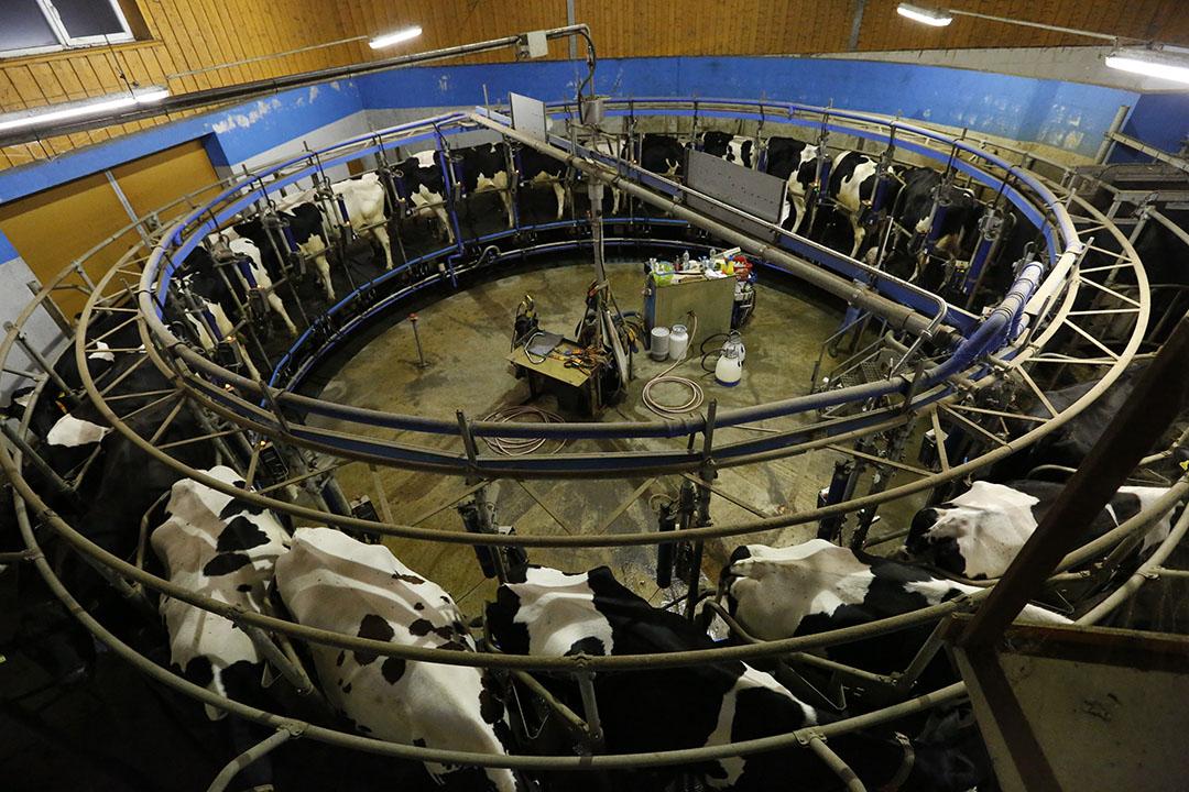 DMK wil zich meer gaan concentreren op de verwerking van melk. - Foto: Henk Riswick