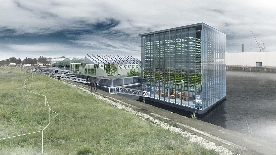 Impressie van de Floating Poulry Farm in de Rotterdamse Merwehaven.