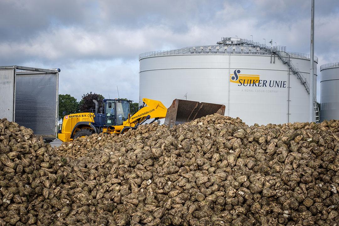Suiker Unie in Dinteloord - Foto: Roel Dijkstra
