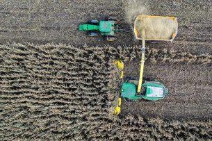 Mais wordt geoogst in Wisconsin, oktober 2019. Dit jaar wordt in de VS meer mais gezaaid dan eerder aangenomen. - Foto: EPA