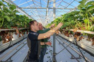 Productiebeperking is mogelijk door een gebrek aan personeel. - Foto: Bert Jansen