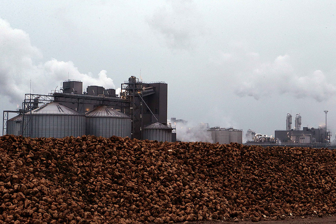 Suikerfabriek in Frankrijk. - Foto: ANP