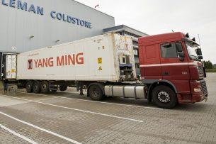 Export van Nederlands varkensvlees naar China. - Foto: Koos Groenewold