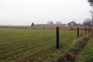 Te koop staand varkensbedrijf met woonhuis en 3 hectare grond (archiefbeeld Misset).