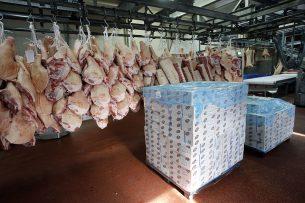 Varkensvlees klaar voor export. Foto: Bert Jansen
