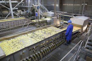 Een medewerker in de aardappelverwerkende industrie controleert het productieproces. - Foto: Jan Willem Schouten
