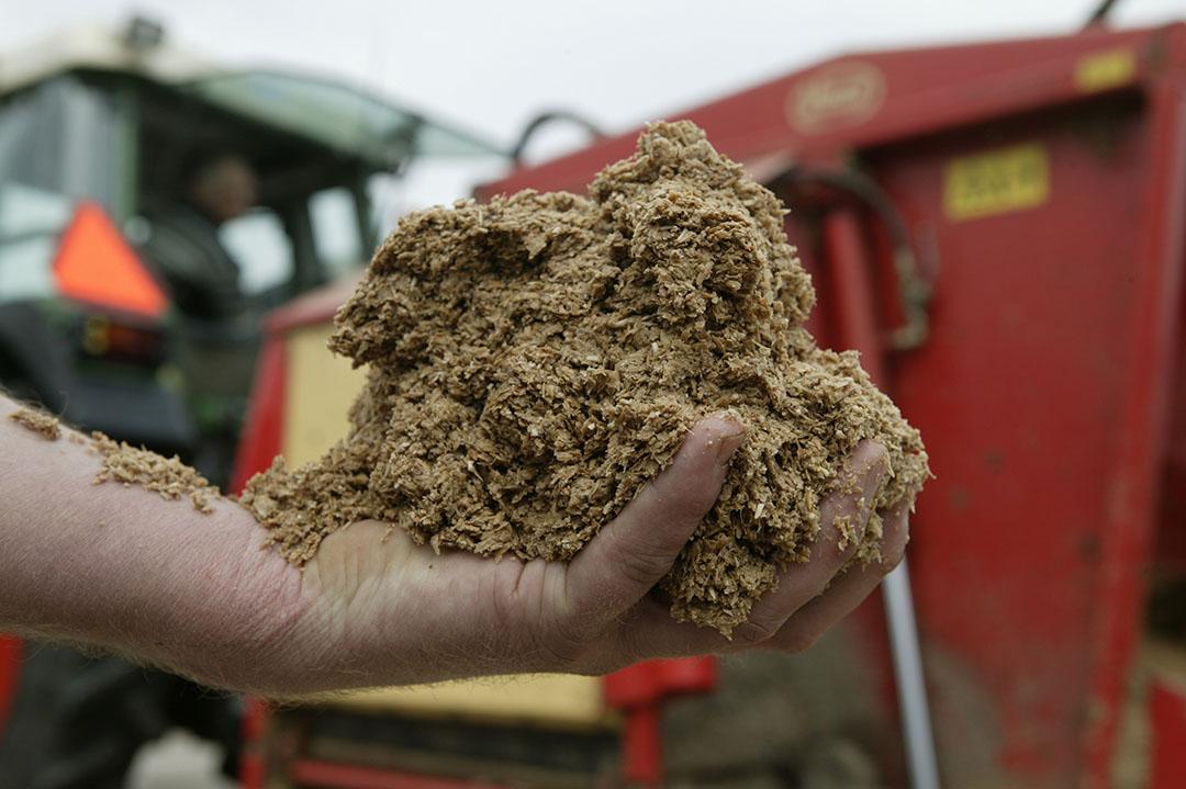 Bierbostel. Boeren houden hun hand op de knip en zijn voorzichtig met aankopen van extra voer. Foto: Mark Pasveer