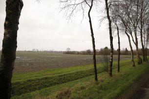 Pachtgrond in Oost-Nederland (archiefbeeld). - Foto: Hans Prinsen