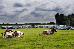 Kamperen bij de boer kan in Nederland op zo'n 2.000 locaties. - Foto: ANP