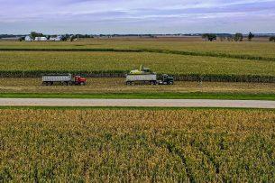 Maisoogst in Illinois (VS). Men verwacht een koudefront, met mogelijk negatief effect op de conditie van het gewas. Foto: ANP