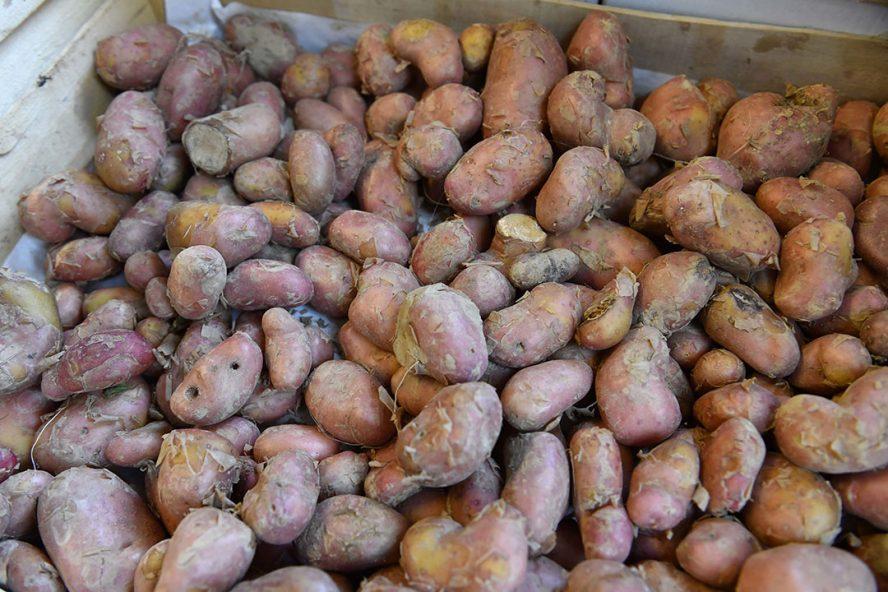 Losse aardappelen zijn minder in trek, omdat de Franse consument dat toch een risico vindt. Foto: ANP