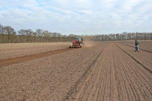 Landgoed Dassenberg bij Steenbergen, net gezaaide gewassen. - Foto: Cosun