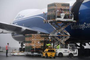 Vanaf de luchthaven in Brest vertrok afgelopen maart een Boeing 747-800-vrachtvliegtuig met fokvarkens naar China. De bestemming is Taiyuan Wusu, provincie Schanxi. - Foto: ANP