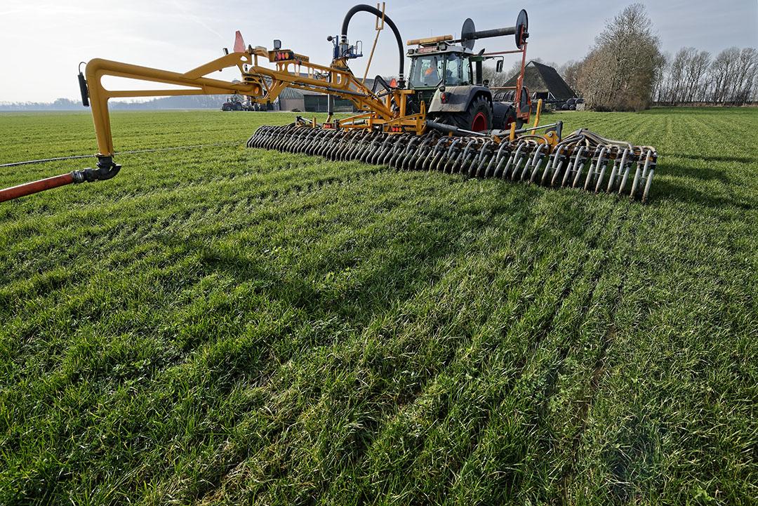 Verdunnen van mest bij toepassing met sleepvoetenbemester geeft vermidering van de ammoniakemissie. - Foto: Lex Salverda