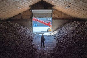 Akkerbouwer Kees Trouw in Hellevoetsluis (Z.-H.) kijkt om zich heen naar de grote berg fritesaardappelen waarvoor hij een andere bestemming moet vinden. Trouw had aan het begin van de coronacrisis nog zo'n 3.000 ton fritesaardappelen in de schuur liggen. Bekijk de video in dit artikel. - Foto: Theo Galama