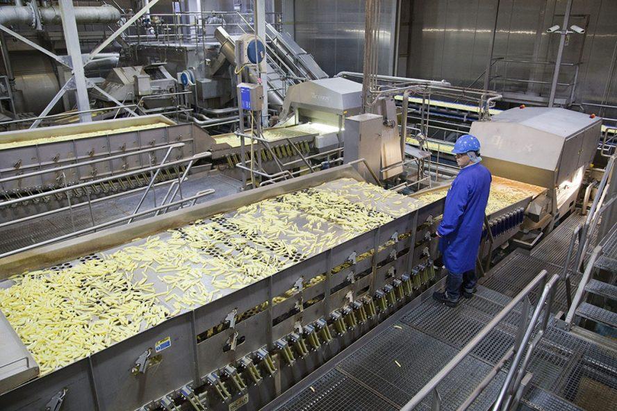 Productie van frites bij Aviko in Steenderen. - Foto: Jan Willem Schouten