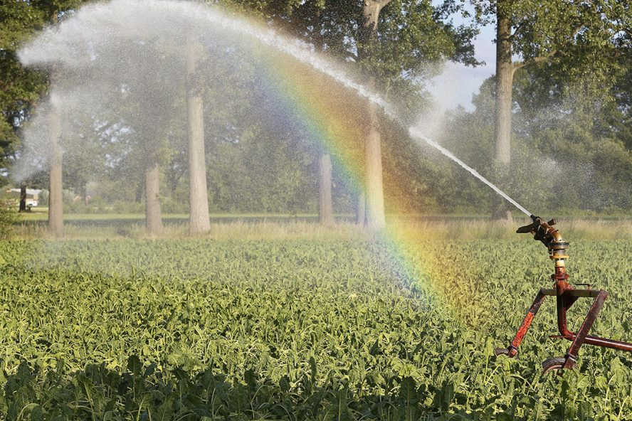 Door afvalwater te hergebruiken zou in potentie 6,6 miljard kubieke meter water beschikbaar komen voor irrigatie of beregening in 2025. - Foto: Hans Prinsen