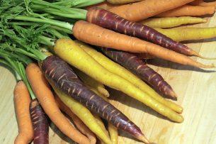 Diversiteit aan wortelen. - Foto: Frankgbarnett