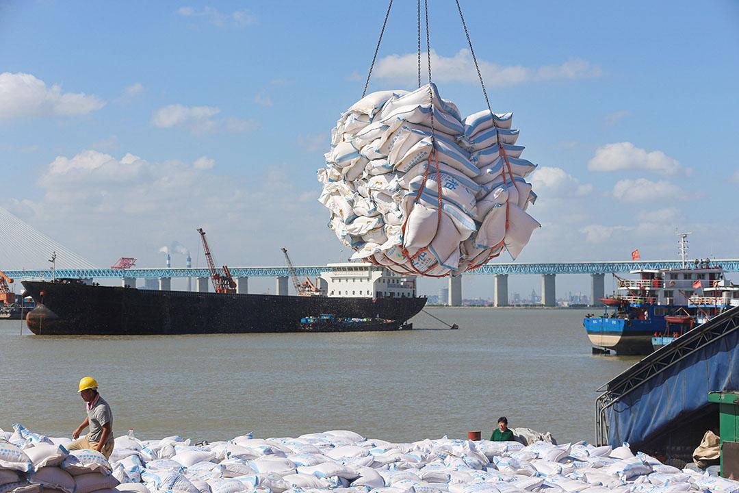 Chinese werknemers lossen een vracht sojabonen. - Foto: ANP