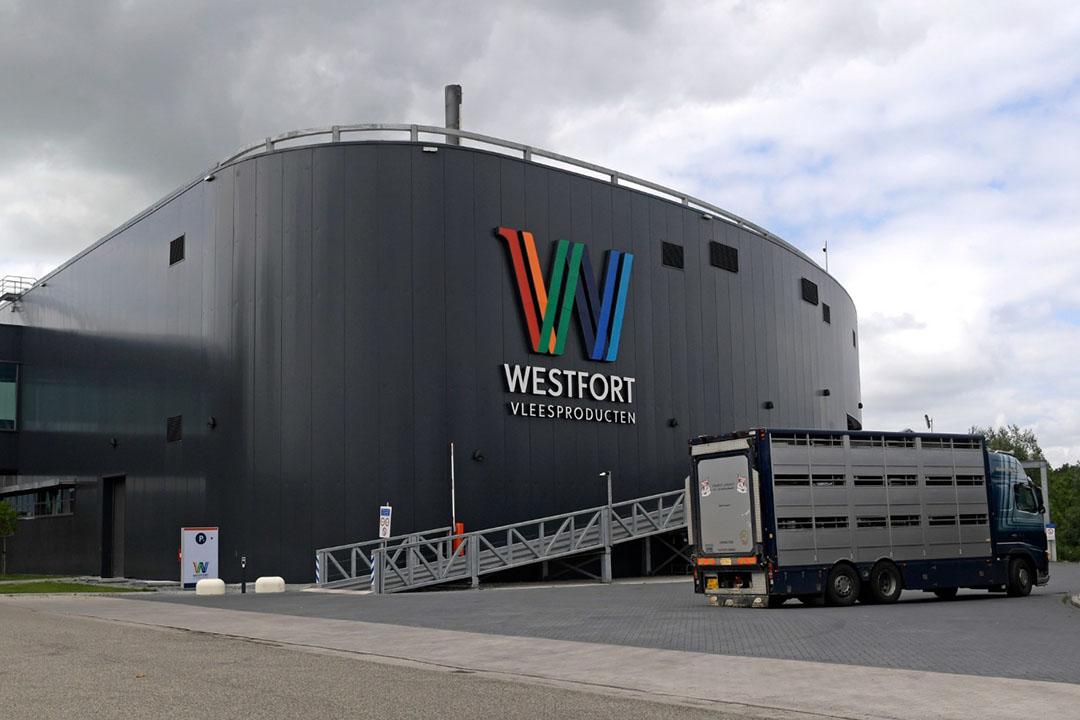 Slachterij Westfort in IJsselsein hoeft naar aanleiding van het gebleken besmettingspercentage geen extra maatregelen te nemen. - Foto: Fotopersbureau Dijkstra