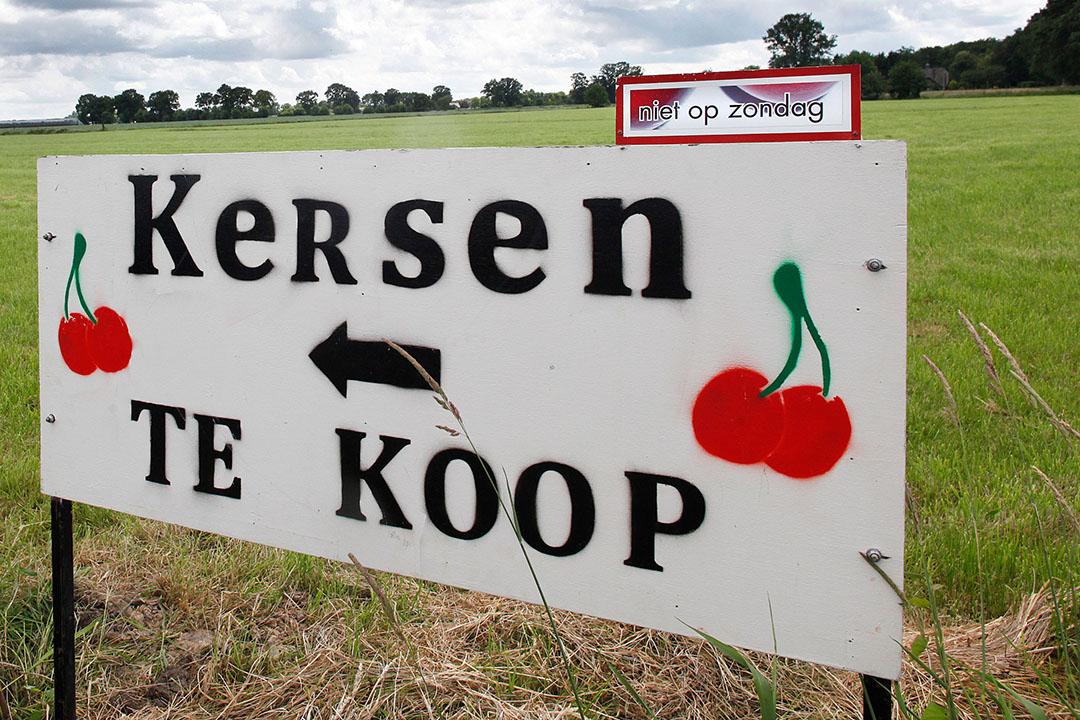 De beste korte keten functioneert in het voorjaar met asperges bij de boer en op dit moment kersen en aardbeien.  - Foto: Ton Kastermans