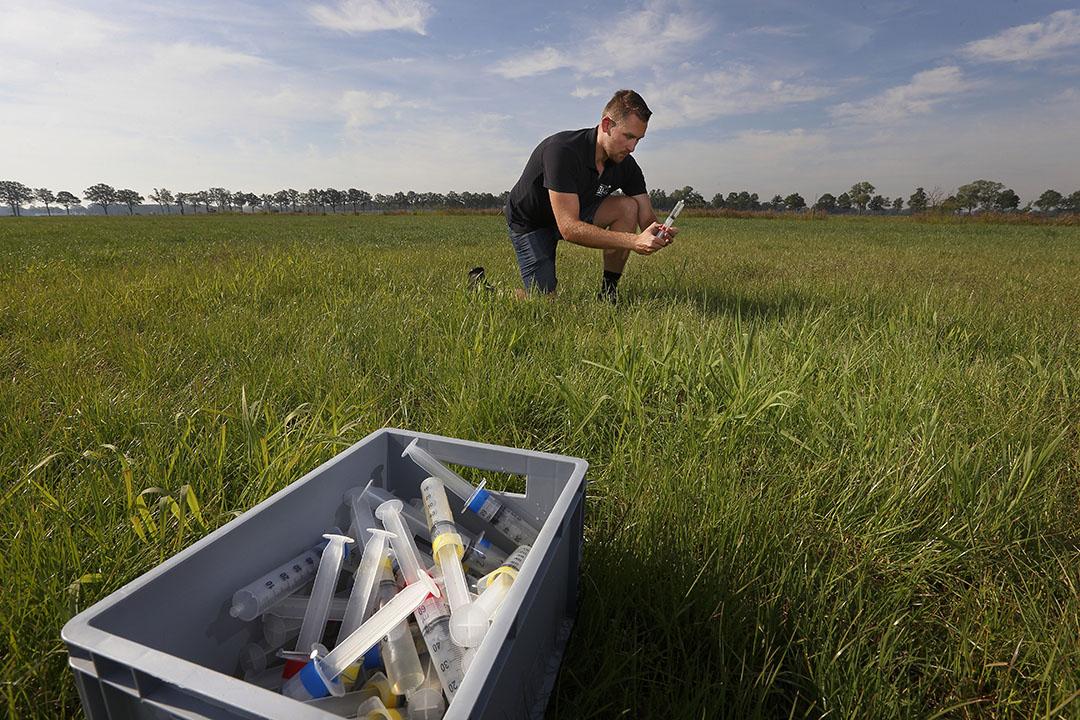 Een veldmedewerker tijdens een proef. Zogenaamde cups in de grond vangen het uitgespoelde water op. In dit water worden de concentraties mineralen en dus zeoliet gemeten. - Foto: Hans Prinsen
