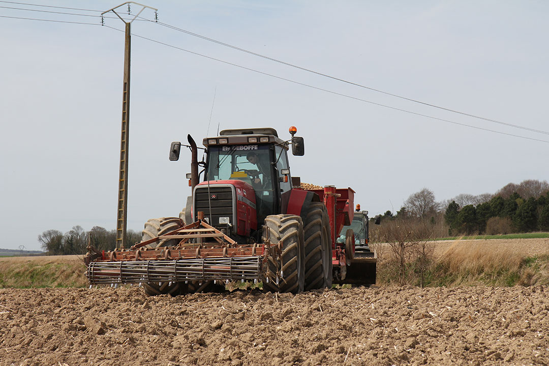Poten van aardappelen op Franse grond. In Frankrijk is de gemiddelde prijs voor vrije agrarische grond vorig jaar met €6.000 per hectare stabiel gebleven vergeleken met 2018. Foto: Matthijs Verhagen