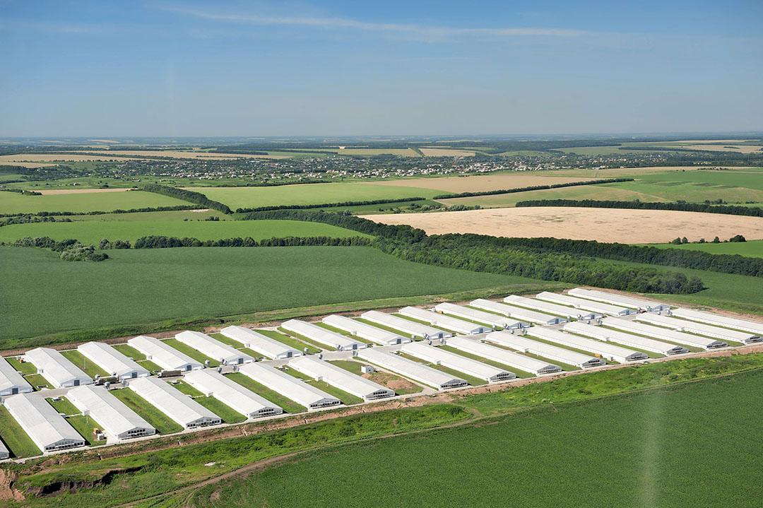 Vinnytsia Poultry Complex, een van de grootste productielocaties van MHP in Oekraïne. - Foto: MHP