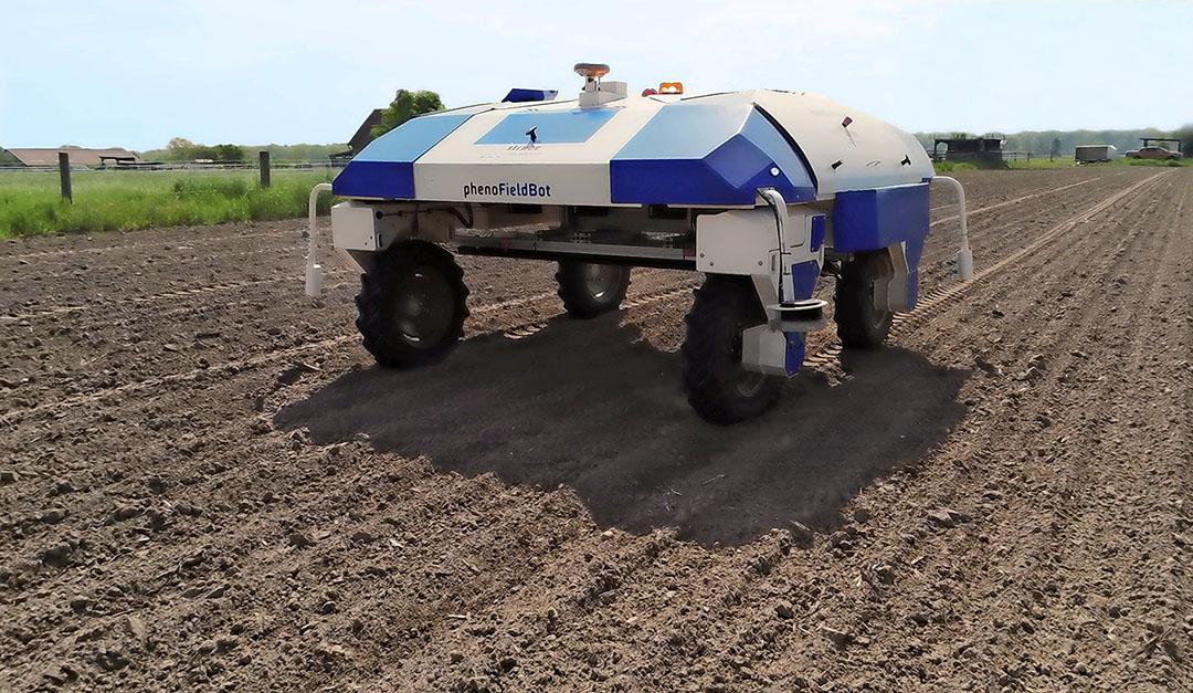 Een veldrobot rijdt elf dagen na het bieten zaaien over een proefveld van Strube. Met behulp van foto's wordt de opkomst van de bieten bepaald. - Foto: Strube