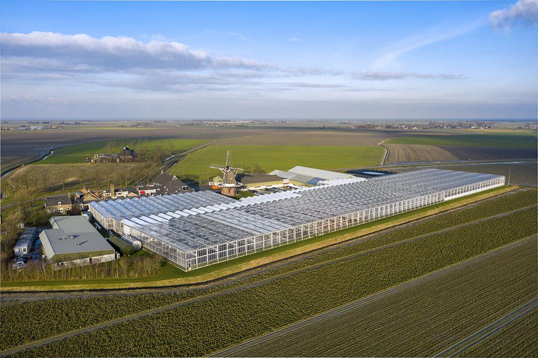 Het HZPC-kweekbedrijf in Metslawier (Fr.). - Foto Ruud Ploeg