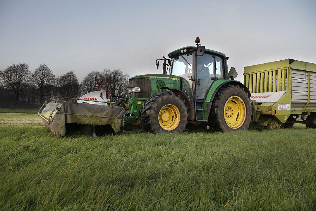 Vorig jaar voerden veehouders tot diep in de herfst vers gras bij. Dit jaar kan dat een van de oplossingen zijn om in de eiwitbehoefte van koeien te voorzien. - Foto: Hans Prinsen
