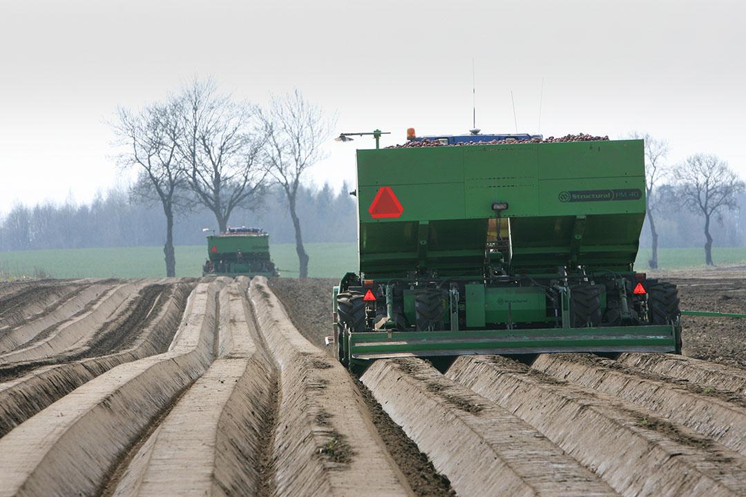 Poten van aardappelen in Polen. - Foto: Peter Roek