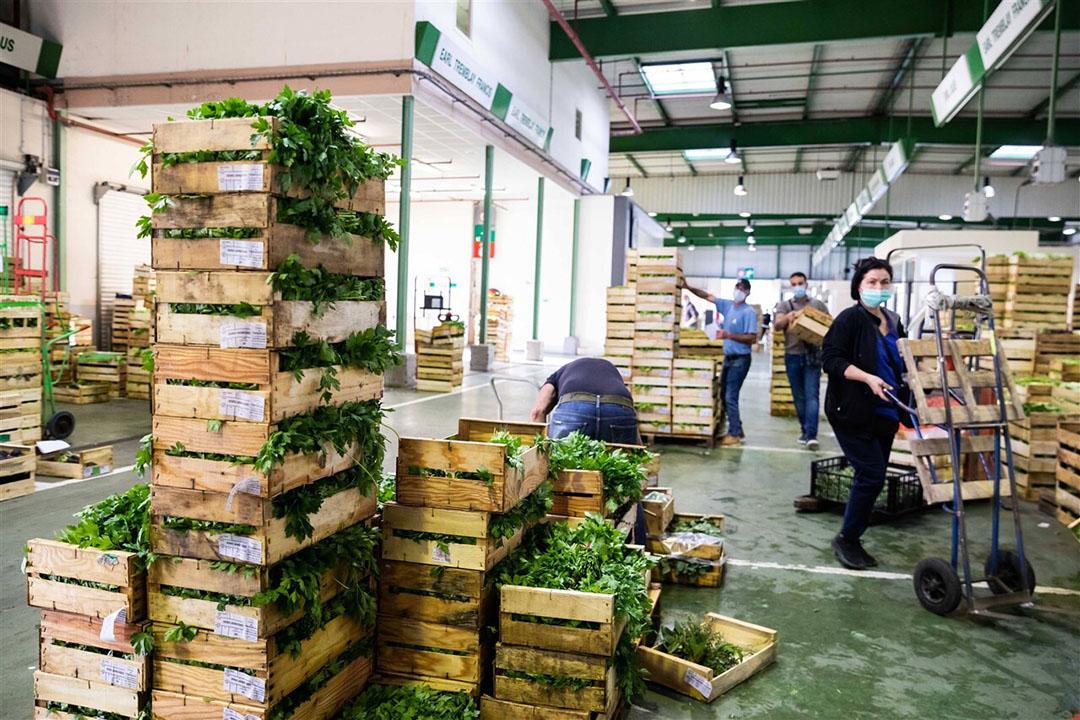 Arbeiders op groothandelsmarkt Rungis. De grootste versmarkt van Europa nabij Parijs draait weer, zij het onder een strikt coronaprotocol. - Foto: ANP